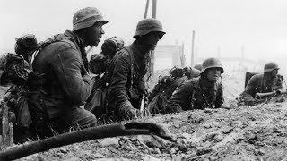 Историк Юрий Никифоров: «Сталинград — переломная точка Второй мировой войны»