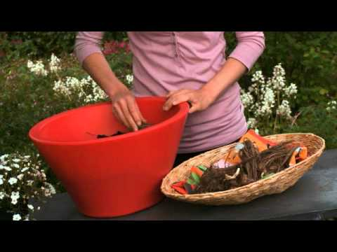 How to plant dahlias in pot or tub youtube - Comment planter des dahlias ...