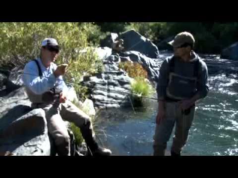 Bollibokka Fishing Club How To With Shane Kohlbeck