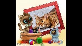 Классные бенгальские котята с кошкой