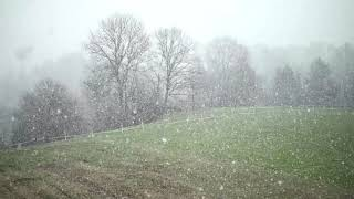 추운 겨울날 포근해지는 bgm #명상음악#컨츄리#포크#…