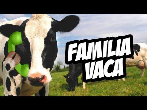 Broma Telefónica 2017: Familia Vaca y Llamada KR | Damian y El Toyo