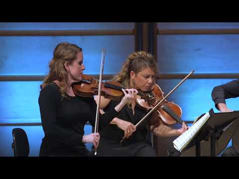 Johannes Brahms: Quintet in B Minor for Clarinet and Strings Op. 115 (Omega Ensemble)