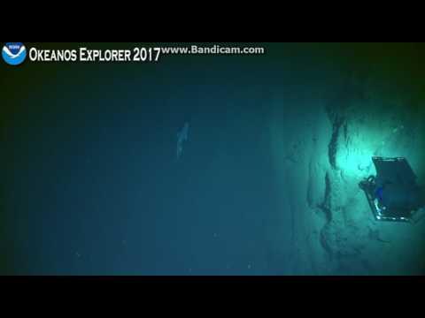 Okeanos Howland Island 600 meters