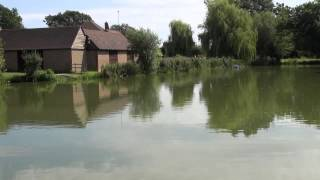 PONDWOOD FISHERIES, PONDWOOD FARM, WHITE WALTHAM, BERKSHIRE