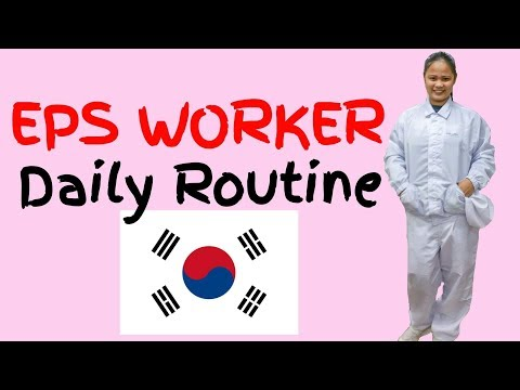 EPS WORKER DAILY ROUTINE