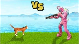 CAT Kills a Pro Player | Fortnite WTF, Troll & Funny Moments #14 Funny and Best Moment  # 108