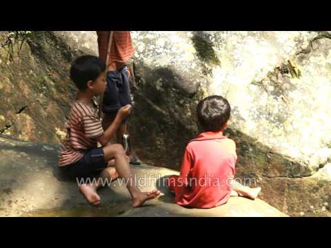 Kids catch fish from a stream in Sohra, Cherrapunjee