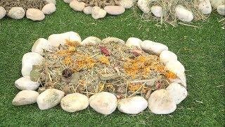 NATURALISS – Naturalna karma dla gryzoni i zajęczaków