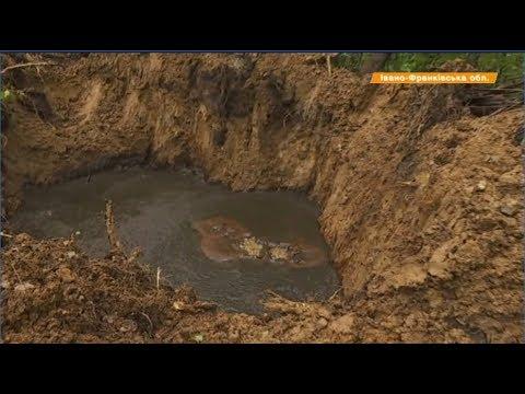 На Прикарпатье нефть