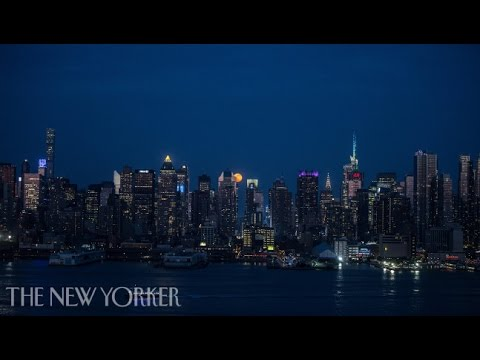 On Light Pollution: The End of Darkness | The New Yorker