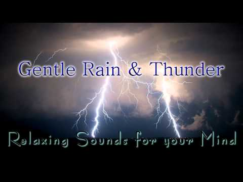 🎧 GENTLE RAIN & THUNDER Sounds for Relaxing, Meditation, Sleep & Tinnitus