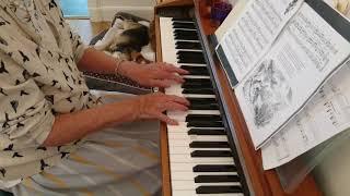 The Lark in the Clear Air, Piano (Samuel Ferguson)