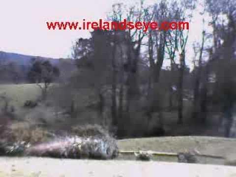 Irelandseye leprechaun watch and webcam