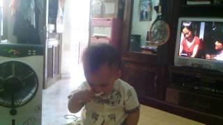 Bim ăn Kiwi