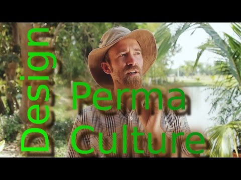 The Pranya Project (Thailand Permaculture)