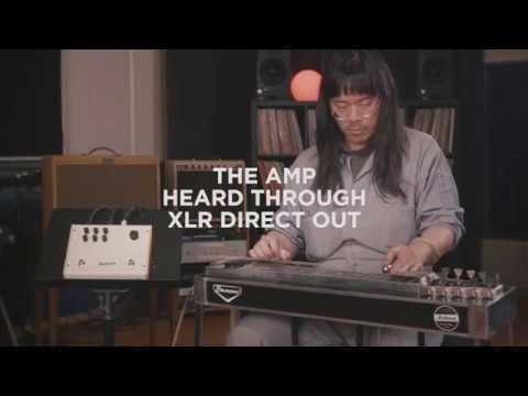The Amp - Pedal Steel Guitar