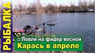 Рыбалка на фидер ранней весной. Карась в апреле. Открытие сезона 2019
