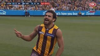 AFL 2016: Round 21 - Hawthorn highlights vs. North Melbourne