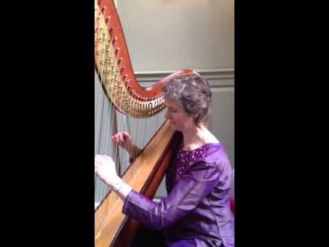 Absolute Harp performing Raat Ki Hatheli Par