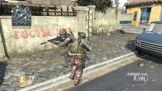 Bullywiiplaza mod injector for black ops 2