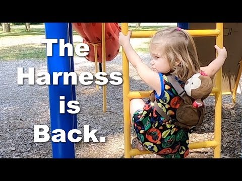"""Autism and Eloping  Toddler Backpack """"Leash"""" Returned?"""