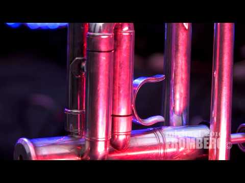 Musical Instruments and Beautiful Lights - Michael Fromberg