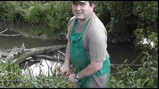 Ma façon de pêcher l'écrevisse américaine !