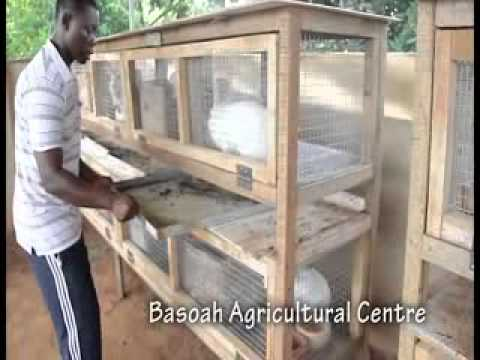 basoah agricultural centre