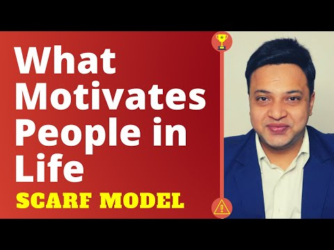 What Motivates People in Life | SCARF Model for Influencing others