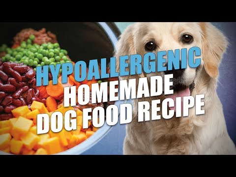 Hypoallergenic Homemade Dog Food Recipe