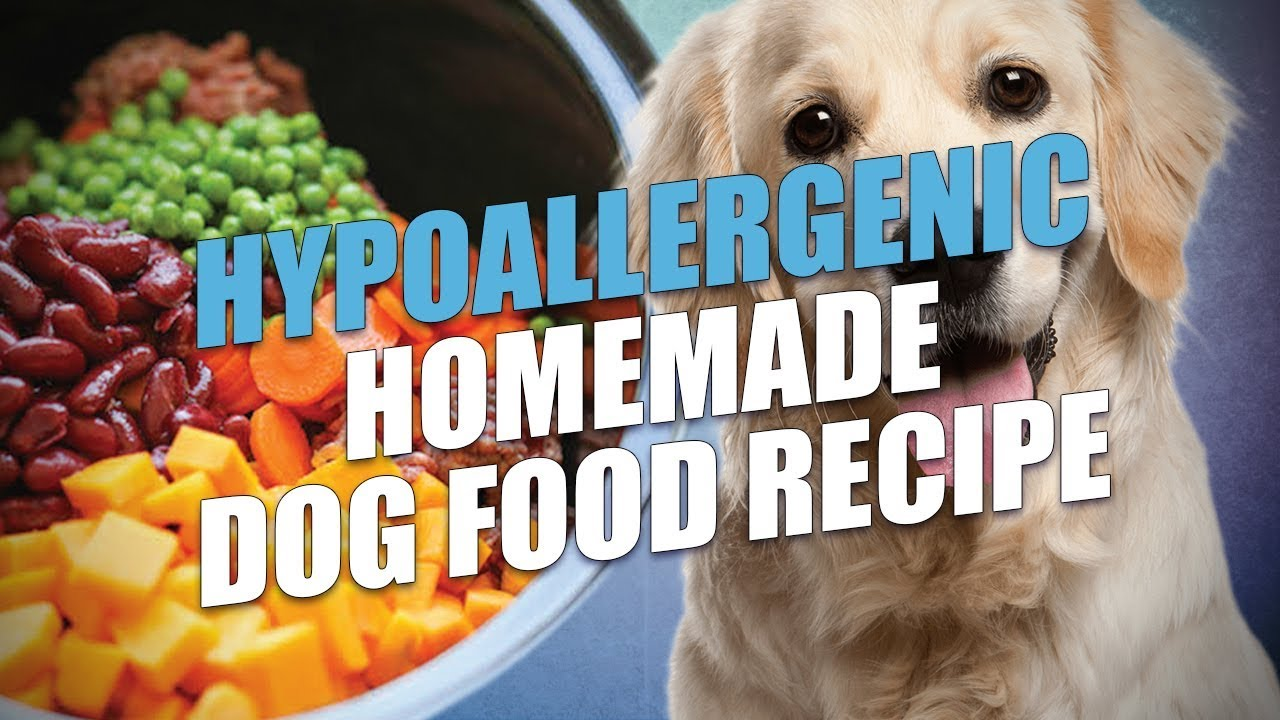 Hypoallergenic Homemade Dog Food Recipe - YouTube | Make Your Own Dog Food Allergies