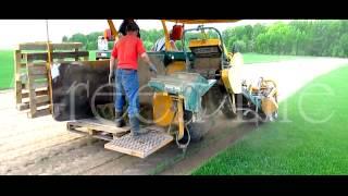 Рулонные газоны(, 2014-05-05T13:55:27.000Z)