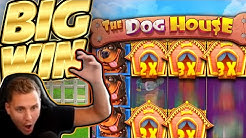 BIG WIN!!! Dog House BIG WIN - Casino Games played on CasinoDaddys stream