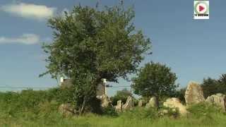🗿 Erdeven: Les Menhirs Libres de Kerzerho - Bretagne Télé