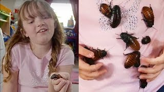 She Collects Cockroaches