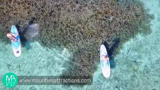 Discover Blue Bay Marine Park by SUP (Stand Up Paddle)
