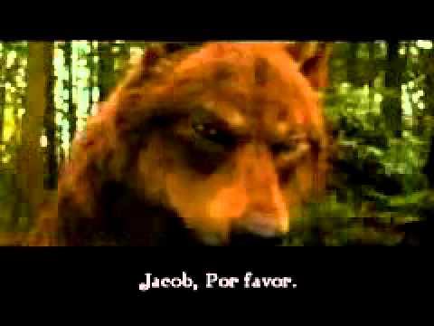 La saga crepusculo  eternal flame(facebook Marcelo Velasquez)