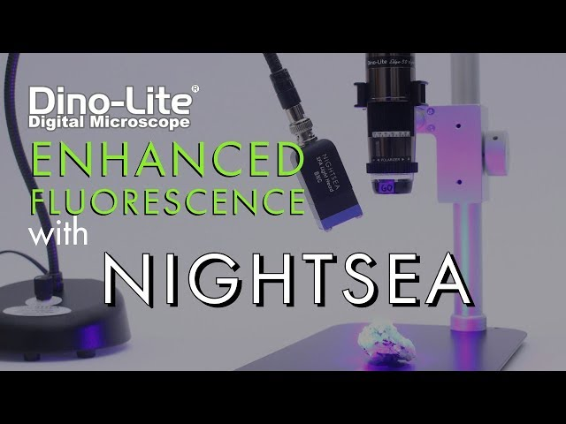 Expand the fluorescence abilities of Dino-Lite with NightSea