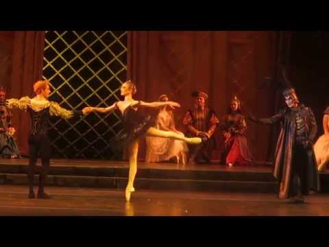 Sarah Lamb / Steven McRae - The Swan Lake