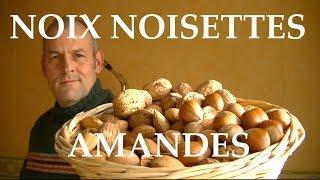 Noix, Amandes, Noisettes, un bonheur pour votre santé, et prévient du cancer .
