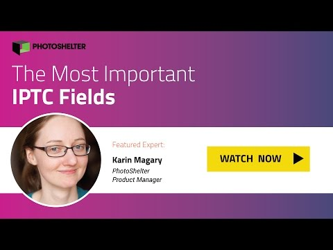 Which IPTC Fields Are Most Important?