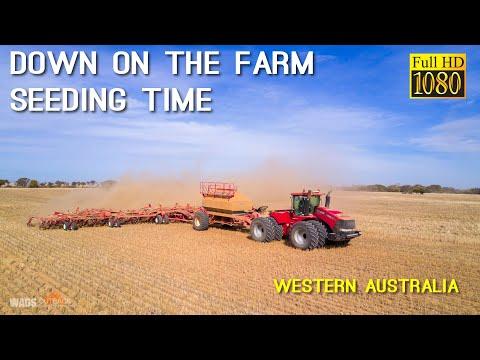 Seeding Time Down On The Farm Western Australia