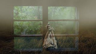 Зоя Ященко Сто лет одиночества