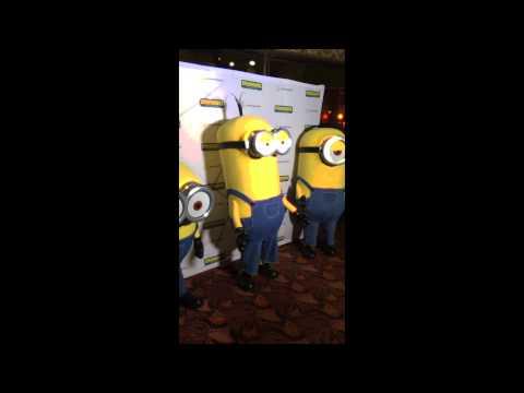 Meet the Minions