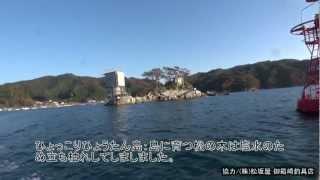2012 11 15大槌湾2