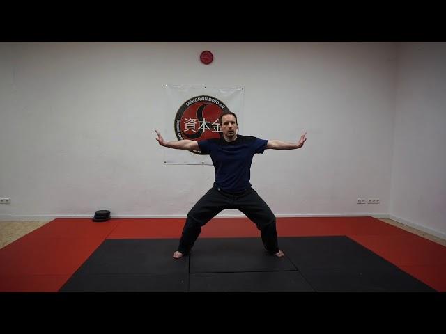 Stärke dein Immunsystem mit Fitness Fighting! - Shihonkin Dojo e.V.