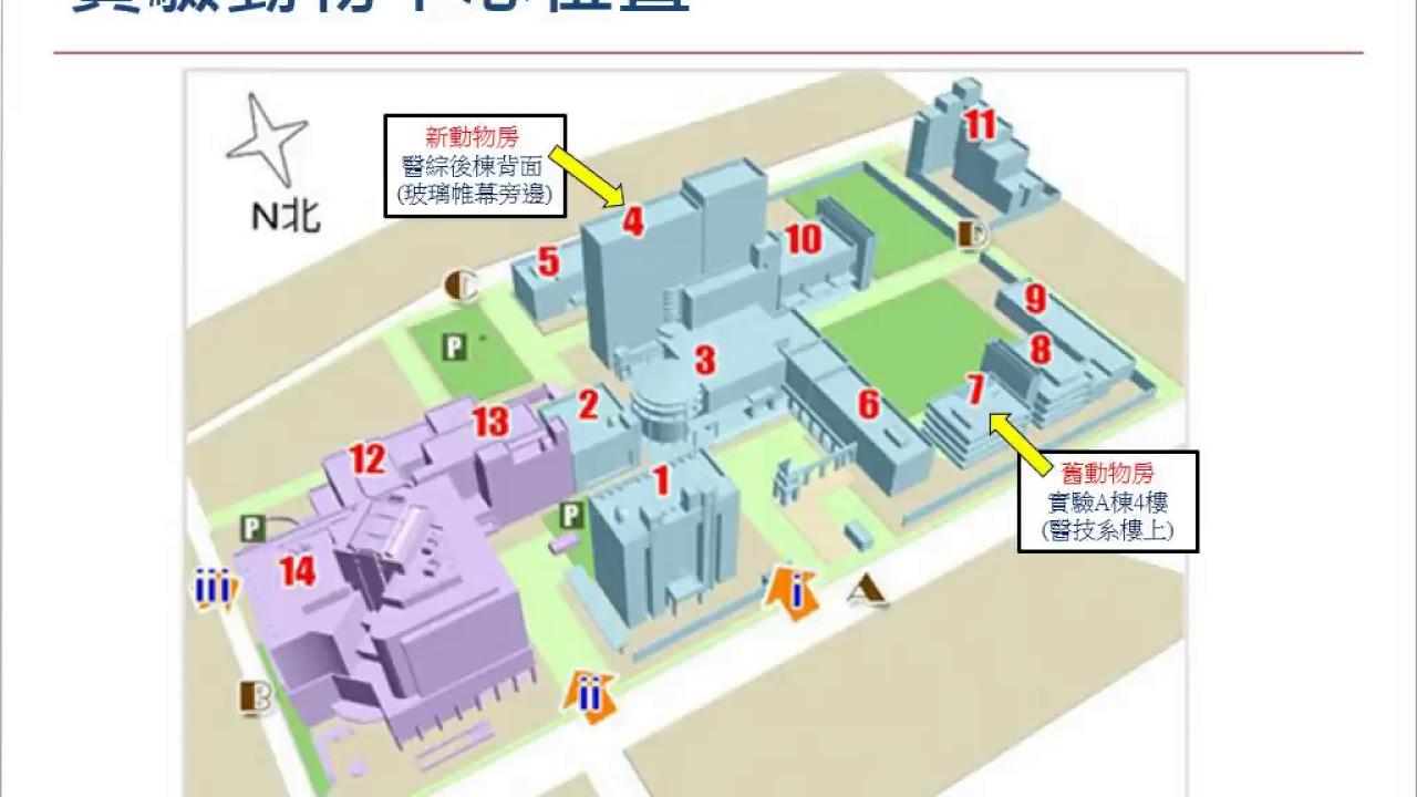 北醫實驗動物中心使用說明會2017/03/01 - YouTube