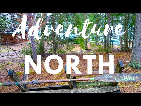 Adventure North To The Iron Range    Relaxing Northern Minnesota Cabin Life    Paper Birch Trees