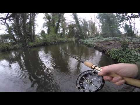 Barbel Fishing - Stick Float